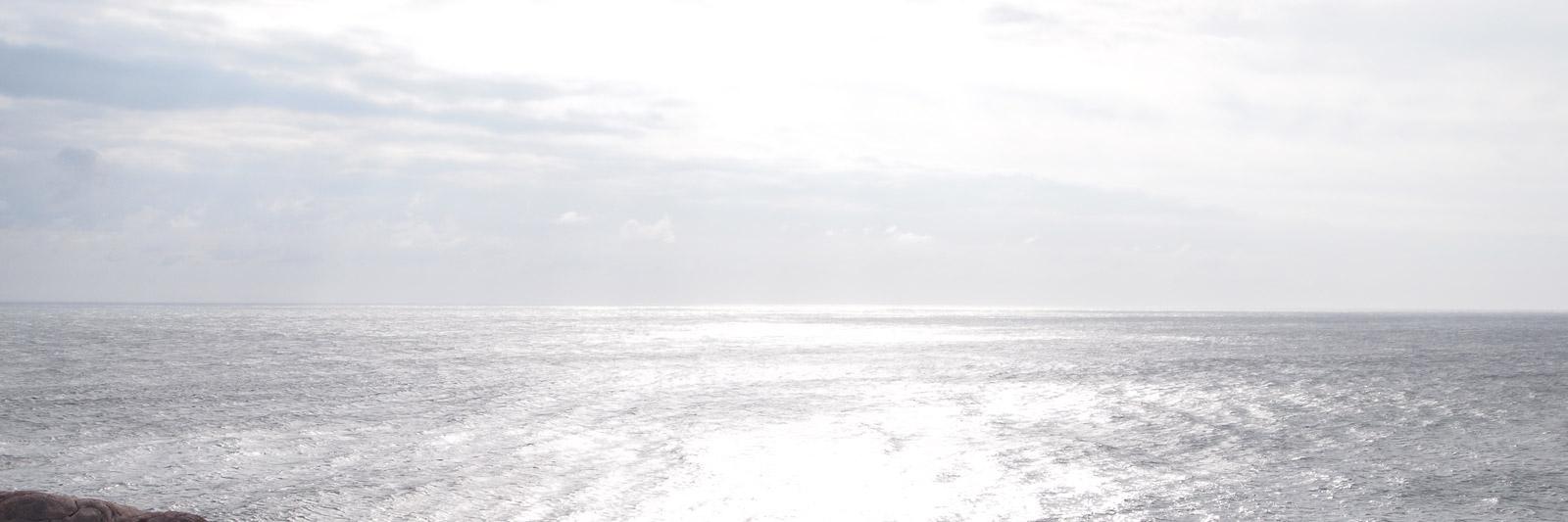 Heilkunst Vlcek - Das Meer
