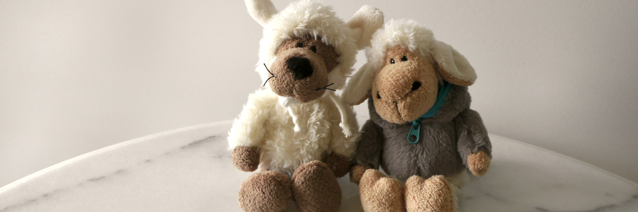 GFK Marshall Rosenberg - Zwei Schafe