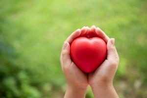 PTBS Traumatherapie - Zurück zu Vertrauen und Liebe